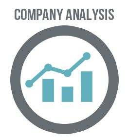 Business-Plan-Template-Company-Analysis