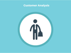 How_to_Create_a_Business_Plan_in_One_Day_Customer-Analysis