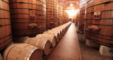Winery Business Plan Template [2021 Updated]