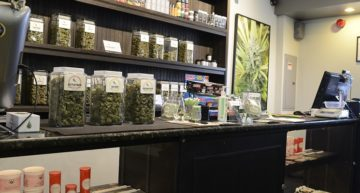 Dispensary Business Plan Template [Updated 2021]